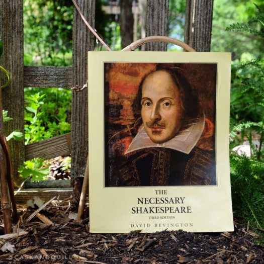 The Necessary Shakespeare cover